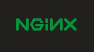 NGINX Kurulumu